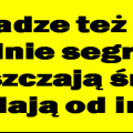 czy_wladze_png.png