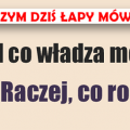 2015_04_11_co_wladza_robi_png.png