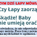2015_04_14_baby_nie_orza_png.png