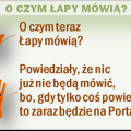 a_o_czym_teraz_png.png