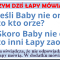 baby_nie_orza_ii_png.png