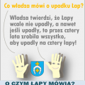 cztery_lapy_ii_png.png