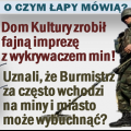 wykrywacz_min_png.png
